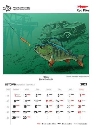 PRZEDSPRZEDAŻ - Wędkarski Kalendarz 2021 - Kalendarzyk Brań Red Pike NOWOŚĆ!